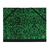 Canson Annonay 2 élastiques Papier cartonné 32 x45 cm Vert