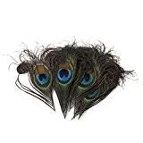 Lot de 10pcs 10-12cm Plumes de Paon Artificielles pour Artisanat Fabrication de Masque Chapeau