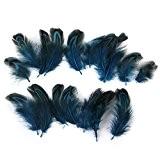 Lot de 50pcs 3-6cm Plumes de Faisan pour Artisanat Fabrication de Masque Chapeau