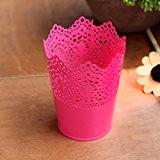 OLQMY-Creux, seaux de métal fleur couleur bonbon, fleur fleur en fer forgé, bureau stylo de décoration, mobilier de magasin, 12,5 ...