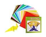 OZ International Lot de 27 Papiers origami 25 x 25 cm 22 Couleurs Assorties unies