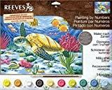 Reeves peinture par numéros, multicolore, Meeresschildkröte