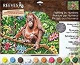 Reeves peinture par numéros, multicolore, Orang Utan