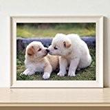 ruimi DIY Diamant 5D broderie kit point de croix Motif chien Kiss Baby collez-le Peinture Home Decor 30,5x 40,6cm