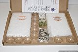 Starter Kit de fabrication de bougie chauffe-plat