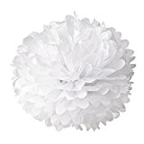 20 x Pompon Boule de Fleur en Papier de Soie Décoration de Noce - Blanc