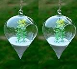 artlass Lot de 2à suspendre Terrarium en verre transparent fleur vase suspendu Bouteille Container