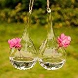 artlass Lot de 2plantes Terrarium en verre à suspendre Air contaciner Vase Forme Goutte d'Eau