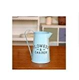 Barils fleurs les décorations de jardin maison fleur seau blue kettle