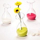 Bouteille en Verre Vase de Fleur Hydroponique Maison Décoration Transparent