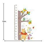 Cadeau Heureuse DIY Wall Art Stickers Toise Muraux Animal Transparent Amovible Décalque Murale Taille :60*90cm (Winnie)