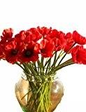 Citron & T 10branche Real Feel hydrater Simulation fleur artificielle Coquelicot Red