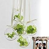 Dia.10cm Vase Suspendu en Verre Transparent Boule pour Plantes Fleurs Décoration de Jardin Maison