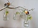 Ensemble de quatre bouteilles en verre Hanging Vintage Petit Mini Bud Vase Décoration de mariage