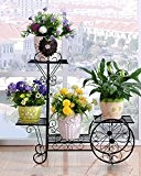 étagère pour fleurs Montage en fer Modèles de fleurs à fleurs Multi - étages à l 'intérieur et à l' ...