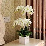 Fleurs artificielles l'espèce d'orchidée fleur en soie en plastique d'émulation petit kit Fleurs Plantes en pot dans le salon salle ...