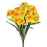 FloristryWarehouse jonquille Bush bicolore jaune 48cm/48,3cm printemps fleur