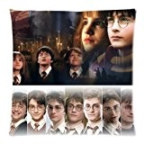 Harry Potter Hermione Granger Pillow Custom Zippered Pillow Cases 18x18 (Twin sides)
