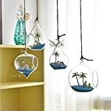 Lot de 4à suspendre Terrarium en verre Vase Décoration de bureau à domicile de mariage
