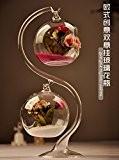 MagiDeal Vase Transparent Double Boule en Verre pour Micro Paysage avec S-forme Support