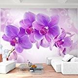 Papier peint photo non tissé 352x 250cm–Runa. Orchidée Papier peint photo mural XXL Décoration Murale image papier peint photo papier ...