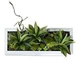 Support mural 3D Fleurs Artificielles Succulente plantes mousse sur la pierre feuilles vert herbe Fougères avec cadre forme vase Décoration ...