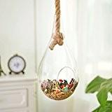 suspension boule de verre/ suspension de corde injecte un vase/ verre/Creative maisons chambre suspendus ornement-A