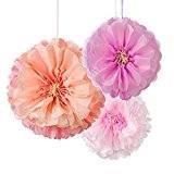 Talking Tables Flower Pom Pom Blush Décadent Decs Multicolore 2,5 x 25,5 x 28,00 cm 3 Pièces