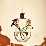 Vase Suspendu en Verre Transparent Ampoule pour Plantes Fleurs Décoration