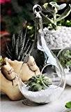 Vase Suspendu en Verre Transparent Conique pour Plantes Fleurs Décoration de Jardin Maison