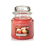 Yankee Candle 1507729E Bougie Parfumée Moyenne Jarre Pêche d'Été Combinaison Orange 10 x 9,8 x 12,4 cm 410 g
