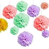 ZeWoo 15pcs Pompons Papier de Soie, Décoration Fleur Boule pour Noël Mariage Fête, 5 Couleurs