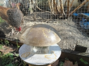 artisanat dart animaux poules lumiere lampe boule : Lampe.Boule de poules