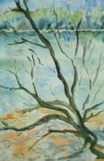 tableau paysages branche arbre mort : l'arbre mort