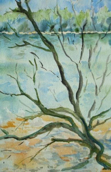PAINTING branche arbre mort Paysages Aquarelle  - l'arbre mort