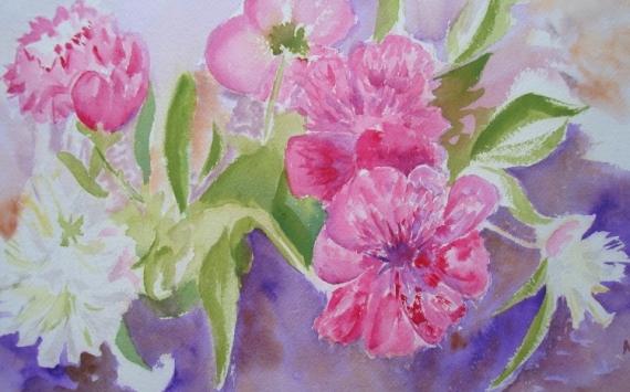 TABLEAU PEINTURE pivoines aquarelle fleurs Fleurs Aquarelle  - pivoines