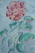 tableau fleurs : rose