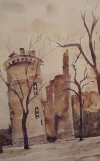 Tours du château Charles Vll