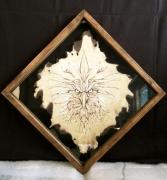 tableau animaux pyrogravure oiseau papier aigle : Aigle