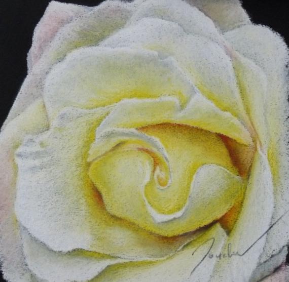 TABLEAU PEINTURE pastel petit format encadré tableau Fleurs Pastel  - Rose