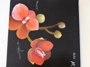 tableau fleurs : Orchidée