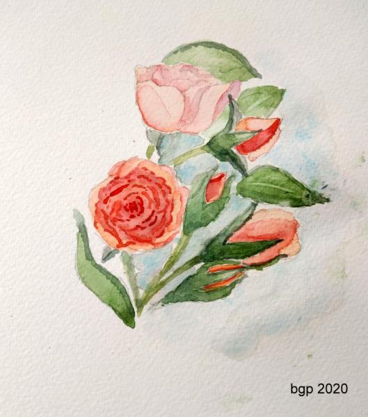 TABLEAU PEINTURE Aquarelle fleur roses bouquet Fleurs Aquarelle  - Bouquet de roses