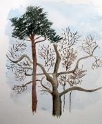 tableau fleurs aquarelle arbres hiver : Arbres en Hiver