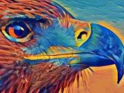 tableau animaux aigle mosaique oiseau profil : Profil d'aigle