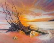 tableau paysages coucher de soleil vieil arbre plage etoile de mer : Le vieil arbre et l'étoile de mer