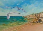 tableau paysages oiseaux plage lumiere liberte : Liberté