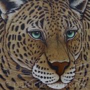 "tableau animaux animaux leopard fauve grand felin : "" SIAM """