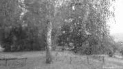photo paysages pluie goutte d eau vitre insolite : jour de pluie