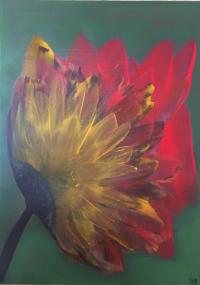 Fleur d'automne 1