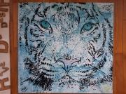 tableau animaux tigre felin : Tigre Blanc